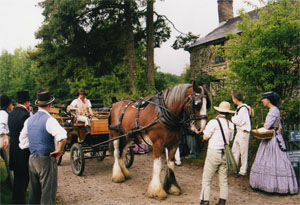 Horse and Cart at Morwellham